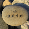 The Power of Gratitude - 7 Reasons to be Thankful